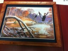 black duck float hunting picture ready to hang on the wall Great Pic