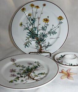 Villeroy und Boch V&B BOTANICA Pflanzen Vitro Porcelaine - Teile zur Wahl