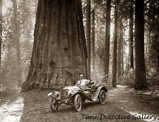 25hp Hudson Car at Sequoia National Park, Tulare, CA -1910- Historic Photo Print