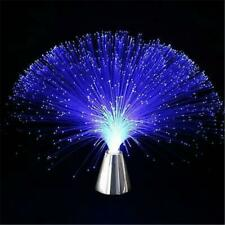 Multicolor LED Fiber Optic Lamp Light Holiday Wedding Centerpiece Color Toy