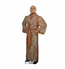 Ric Flair WWE Wrestling Cardboard Cutout Standup Standee Poster