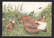 C1980s Medici Art Card - Vixen & cubs by Caroline Manning
