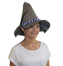 Harry Potter World Book Day Hermione Mago Strega Grigio Cappello Costume  Accessorio e6efccdd5f31