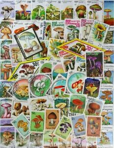 MUSHROOMS, a fantastic collection made up of 100 different stamps (lot#DP)