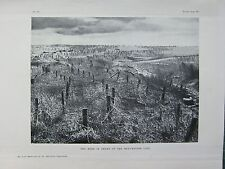 1918 WW1 WWI PRINT ~ BARBED WIRE IN FRONT OF THE BEAUREVOIR LINE