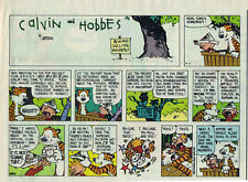 Calvin and Hobbes by Bill Watterson - color Sunday comic page - April 17, 1994