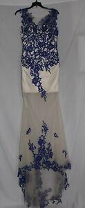 Cream Prom Dress with Blue Lace (Zipper Stuck)