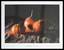 Siegbert Kercher Shades Of Orange Poster Bild Kunstdruck im Alu Rahmen schwarz