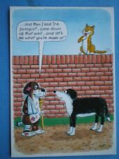 POSTCARD COMIC ANIMAL ANTICS I SAID COME DOWN AND SHOW ME WHAT YOU ARE MAD OFF