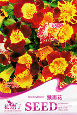 1 Pack 30 Monkey Flower Seeds Mimulus Luteus Mimulus Moschatus Flowers A234