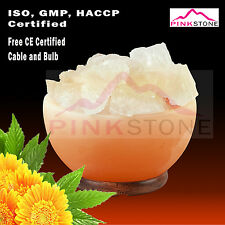 Himalayan Salt Crystal Lamp Fire Bowl Carved 7 Inches With RockSalt Chunks