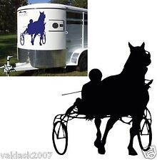 Horse Trailers & Horseboxes with Backward Facing