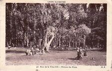 69 - cpa - LYON - Parc Tête d'Or. Pelouse des Ebats
