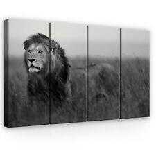 Bild Leinwand Poster Keilrahmen Modern Wandbild Löwe 120 cm*80 cm 307