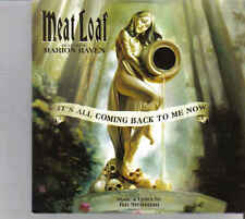 Meat Loaf-Its All Coming Back To Me Now Promo cd single