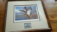 Signed & Numbered 1984 Maine Migratory Waterfowl Print & Stamp