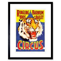Ad Circus Barnum Bailey Ringling Bros Tiger USA Framed Print 12x16 Inch