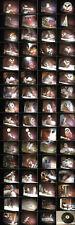 Tierfilm die Schleiereule.Verhalten.Aufzucht Jungtiere 16mm Film-Antique Films