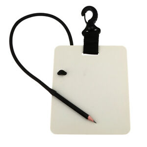 6'' Underwater Writing Slate Pad with Pencil Scuba Diving Gear Shower Notes