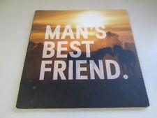 Good - Man's Best Friend (Horses)  2012 H & M