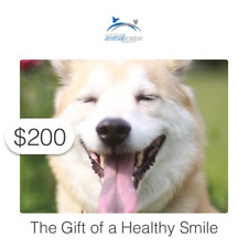 $200 Charitable Donation For: The Gift of A Healthy Smile