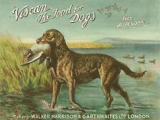 "CHESAPEAKE BAY RETRIEVER DOG GREETINGS NOTE CARD ""VISCAN"" DOG FOOD ADVERT CARD"