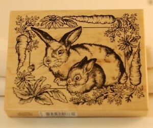 Stamp Rabbit / Bunny Wood Block With a Carrot Border - Easter