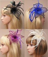 Large Mesh Flower & Feathers on forked Hair Clip Fascinator with Brooch Pin