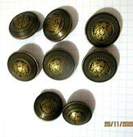 """Lot de 8 boutons en métal couleur """"bronze rehaussé doré avec blason """""""