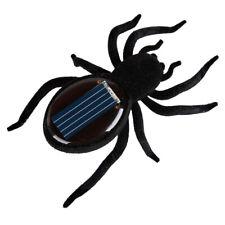 24 REAL dall/'aspetto ragni Halloween Decorazioni Spaventoso CASA DEGLI ORRORI insetti