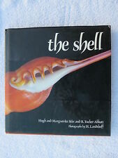 THE SHELL BOOK SEA SHELLS MARITIME NAUTICAL MARINE SAIL BOAT (#135)