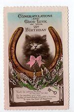 Animal CHAT carte anglaise d'anniversaire  pour les 21 ans joili chat fer clef