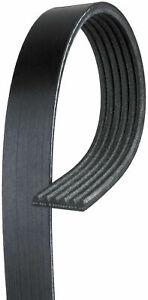 Gates K060355 Micro-V Serpentine Drive Belt