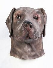 Labrador Chocolat Masque Marron Chien Déguisement Animal Canin Réaliste