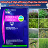 Haloxyfop-P High-efficiency flupirtine Herbicide WeedKiller Remove grass weed