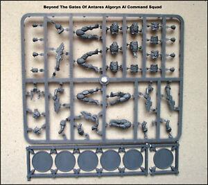 Beyond The Gates Of Antares Algoryn Al Command Squad Figurines 28mm plastique