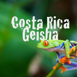 Costa Rican Geisha Reserve Gourmet Coffee Beans Medium ROASTED DAILY 1 Pound Bag