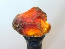 40g Borneo Amber Rough For Jewelry Making Or Display Specimen