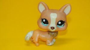 Authentic Littlest Pet Shop  Hasbro Original   LPS  2290