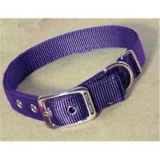 Harnais violet en nylon pour chien