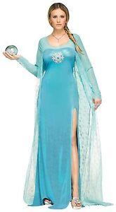 Ice Queen Fancy Dress - Frozen Princess - Womens Costume - Book Week Fancy Dress