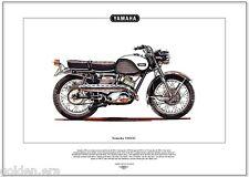 "Yamaha yds3c-Motocicleta Fine Art Print - 250cc alias ""Big Bear' Calle Scrambler"