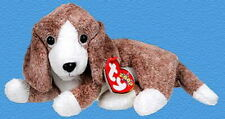 Ty Sniffer Beagle Beanie Babies Dog Mint with Mint Tags