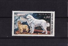 MONACO  exposition canine  chien    1977   num: 1093  **