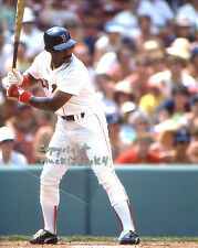JIM RICE Photo in action @ Fenway Boston Red Sox HOF