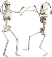 16 Halloween Posable Skeletons Realistic Spooky Full Body Hanging Skeletons Hall
