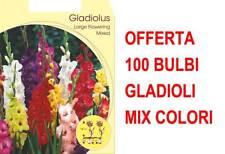 OFFERTA 100 BULBI GLADIOLI A FIORI GRANDI MIX DI COLORI BULBS BULBES