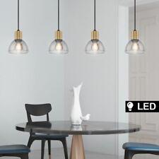 LED Luminaire Suspendu Noir la Vie Chambre de Plafond Spot Verre Fumée