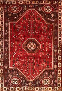 Hand-knotted Rug (Carpet) 5'7X8'7, Shiraz mint condition