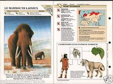 Mammouth laineux Mammuthus primigenius mammoth Prehistoric animal FICHE FRANCE